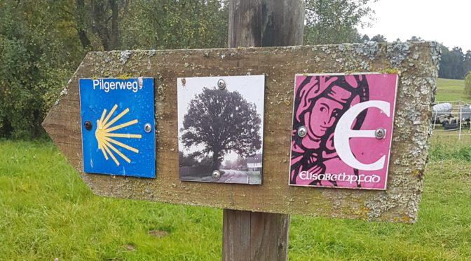 Pilgern in Deutschland – ein Erfahrungsbericht